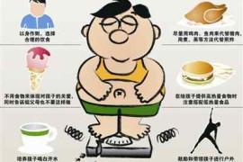 小胖墩的食疗减肥方法