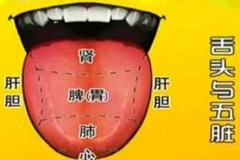 如何看舌苔给宝宝诊病