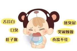 怎样调解宝宝的脾胃不和