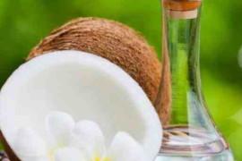 科学家发现椰子油可以减肥