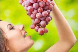 秋天多吃葡萄何以保护肝脏