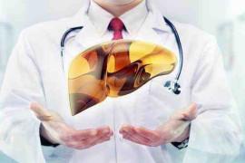 夏天养护肝脏一定要遵循这些原则