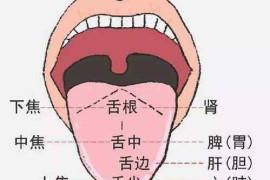 如何从口唇看你的脾胃功能