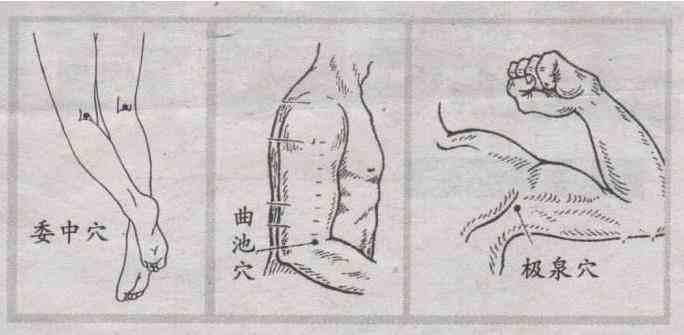 身体的排湿口都有哪些.jpg