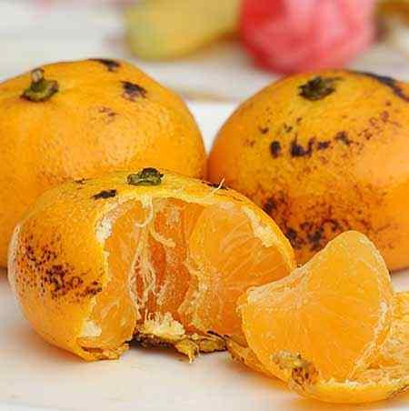 烤橘子.jpg