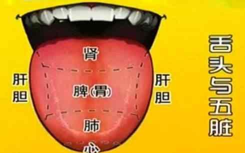 如何看舌苔给宝宝诊病1.jpg