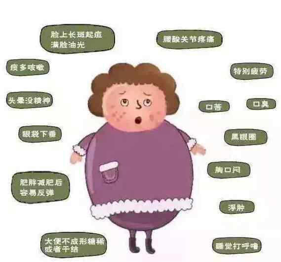 湿气肥胖怎么能瘦下来?中医怎么调理!.jpg