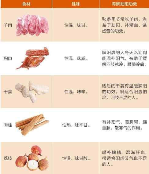 阳虚体质的养脾饮食调养.jpg